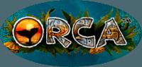 игра - Orca